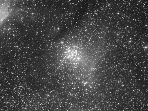 NGC 3293 in Black and White